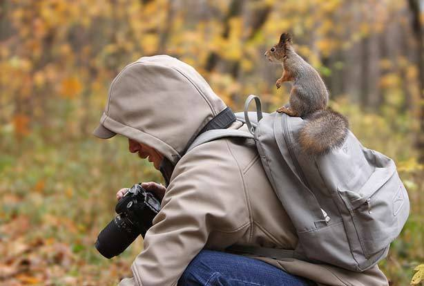 Squirrel-On-Photographers-Back (19-50)
